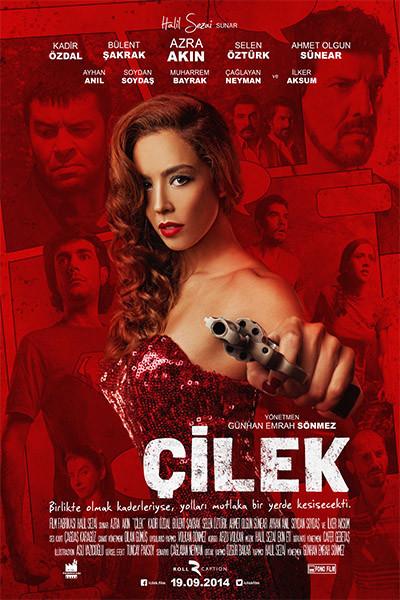 cilek-2014-dvdrip-xvid-yerli-film.jpg