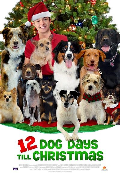noelin-12-kopegi-12-dog-days-of-christma...dublaj.jpg