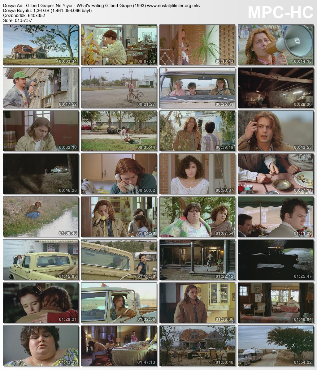 whats eating gilbert grape character becky Music and movies essays: what's eating gilbert grape- becky - character review.