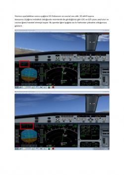 Airbus Tip Eğitimi_020